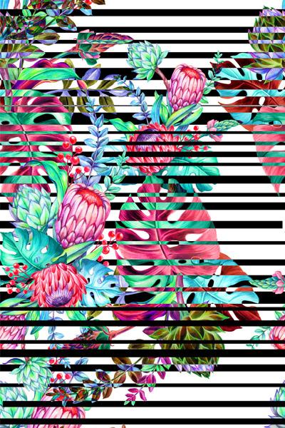 STRIPE-FLOWER